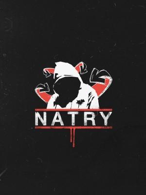 Концерты Natry