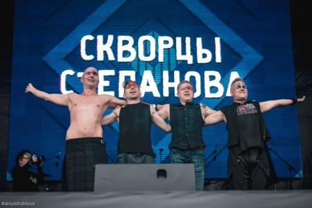 Скворцы Степанова